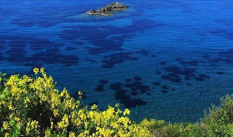 Vacanze_all_Elba__la_guida_ai_posti_da_non_perdere_800x449